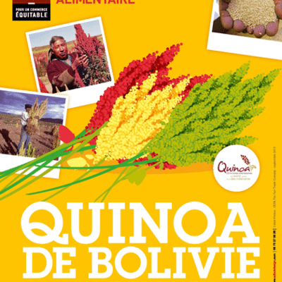 Quinoa de Bolivie : Des graines riches e...